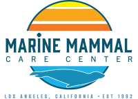 MARINE MAMMAL CARE CENTER LOS ANGELES
